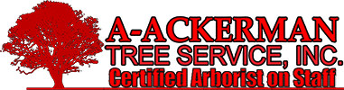A-Ackerman Tree Service