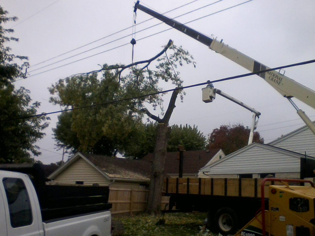 Working around powerlines